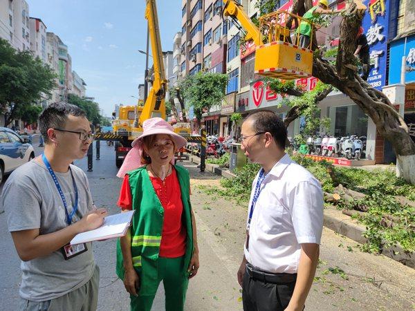 图为:华蓥市纪检干部正在监督检查行道树木修剪情况(余丁 摄).jpg